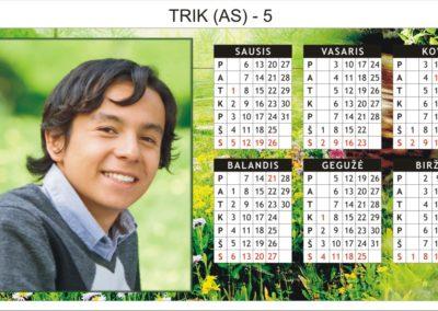 trik-as-5