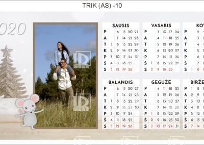 TRIK (AS)-10