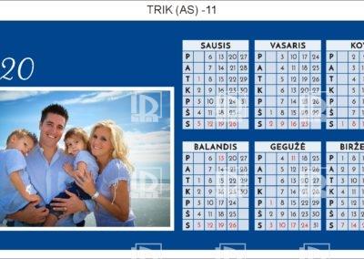 TRIK (AS)-11