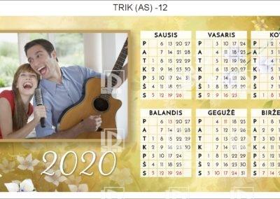 TRIK (AS)-12
