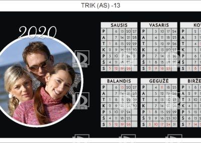 TRIK (AS)-13